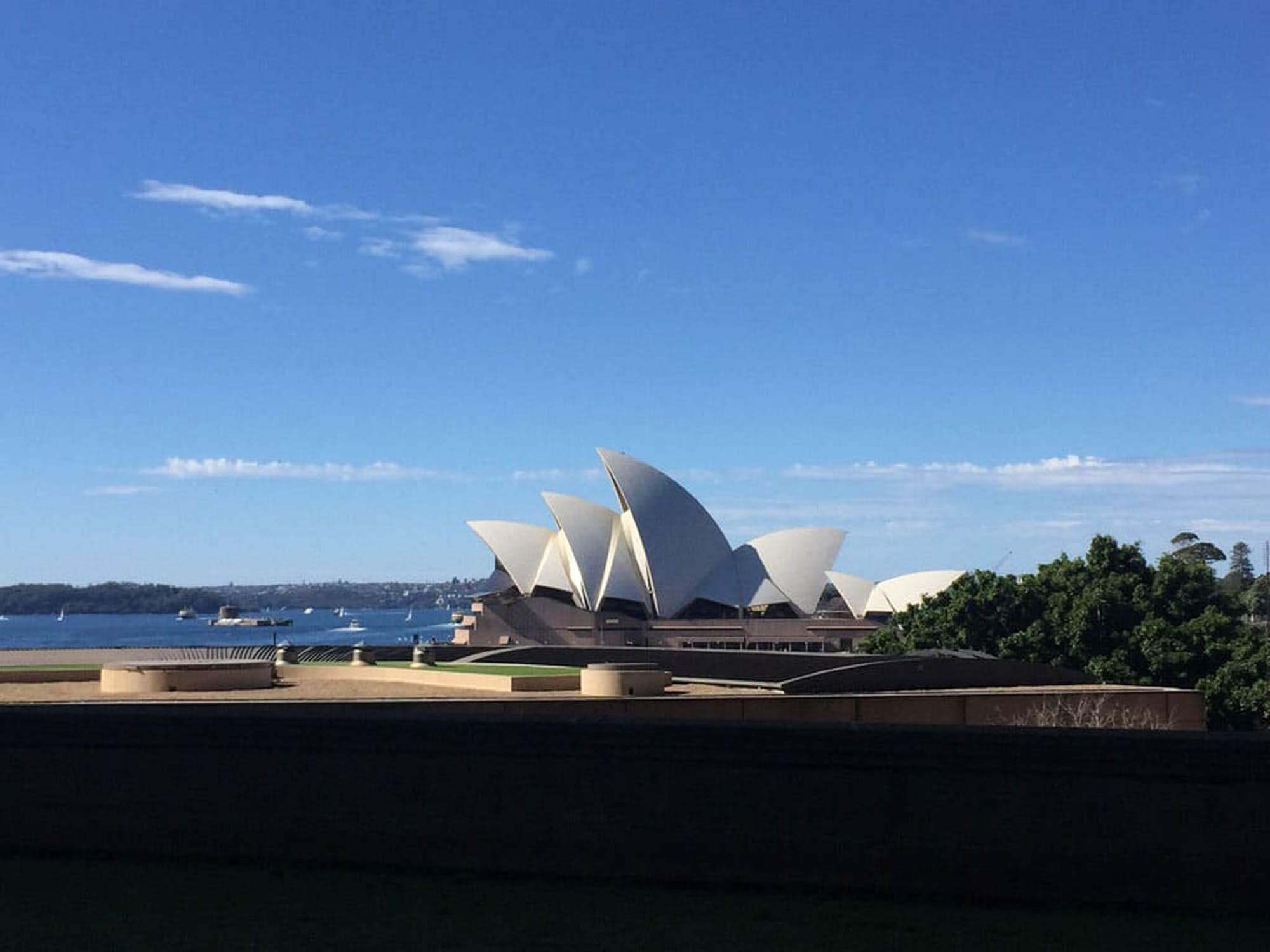 Colibri-Australia 4