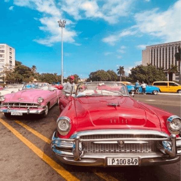 Colibri-Cuba