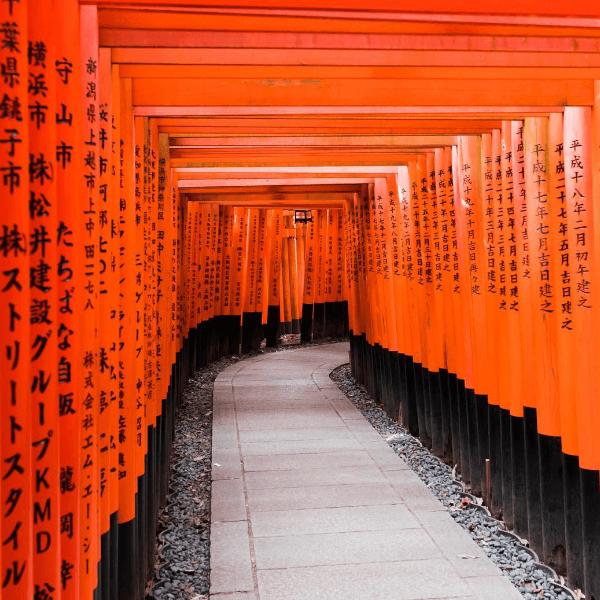 Colibri-Kyoto