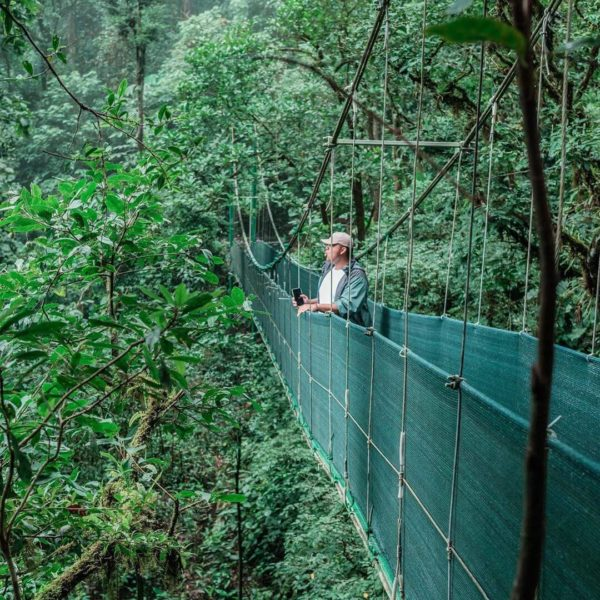 colibri-montverde