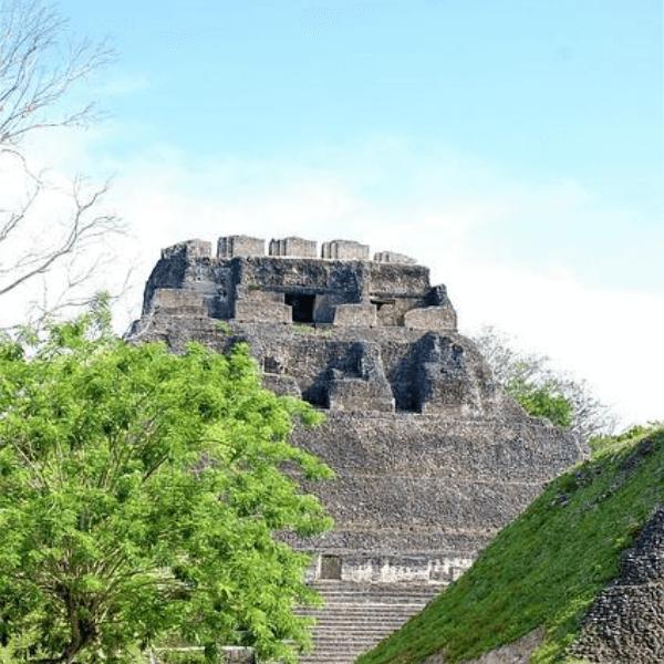 Colibri-Belize 5