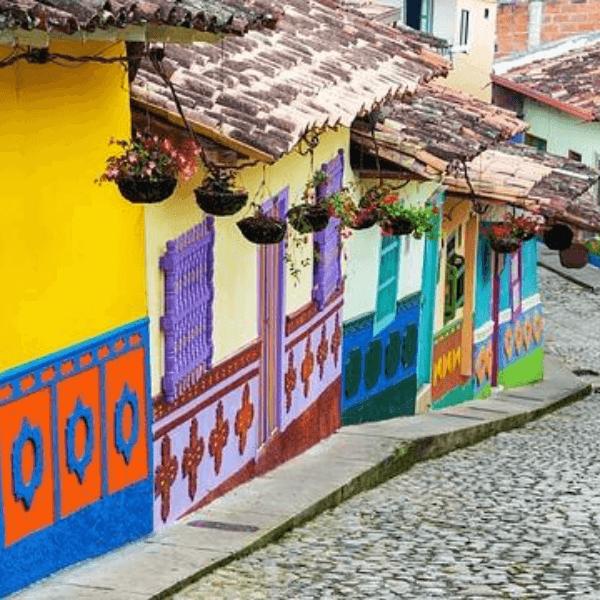 Colibri-Colombia 1
