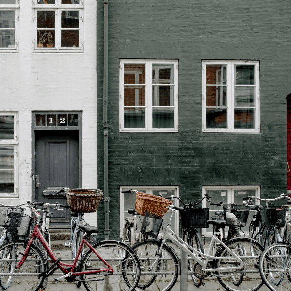 Colibri-Denmark 1