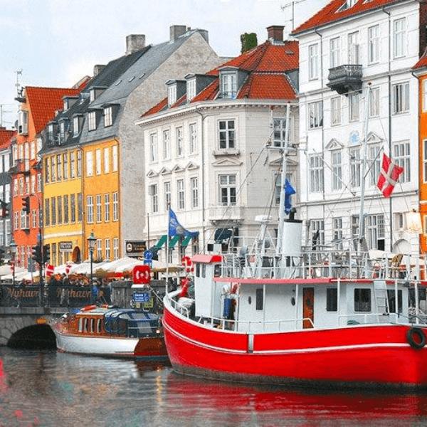 Colibri-Denmark 2