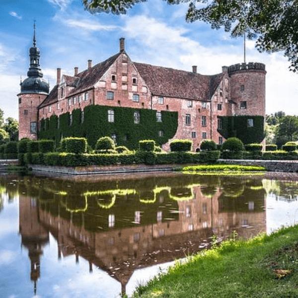 Colibri-Denmark 5