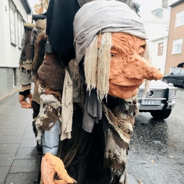 Colibri-Iceland 5