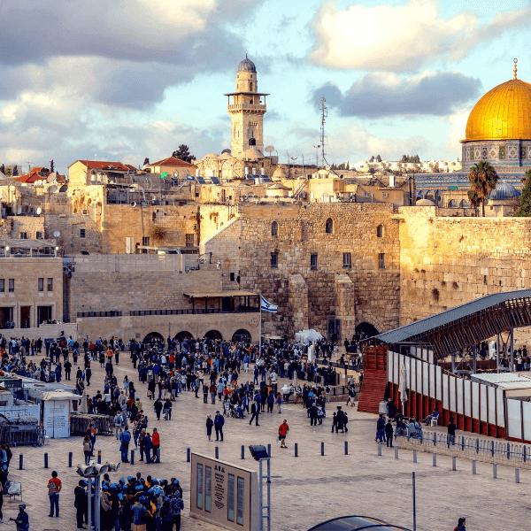 Colibri-Jerusalem