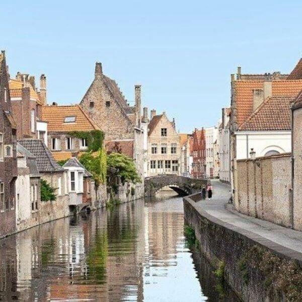 Colibri-Netherlands 5