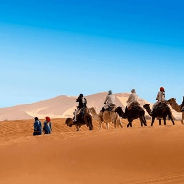 Colibri-Sahara desert